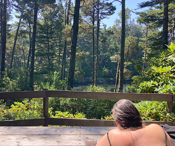 Looking over a woman's shoulder at a fence and, beyond it, a forested lake.