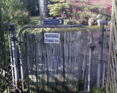 "gate with posted signs: ""no soliciting"" and ""warning: strange dog"""