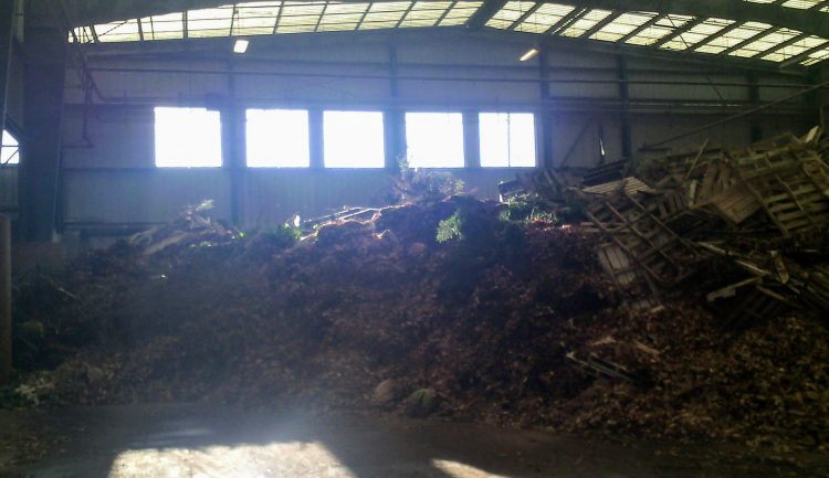 A large pile of pallets and tree limbs in a sunlit warehouse