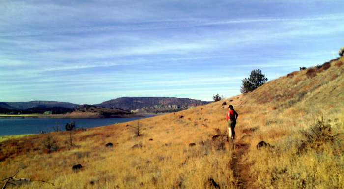Sanguinity on a grassy hillside overlooking Prineville Reservoir
