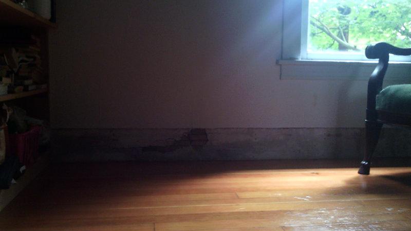 shellacked softwood floor